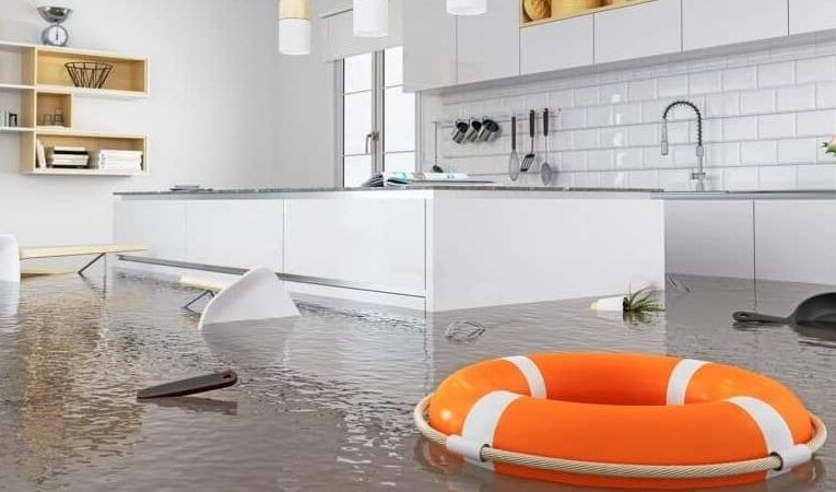 7 Steps to Prevent the Spread of Water Damage